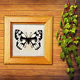 Obrázky - Vyšívaný motýľ - okáň timotejkový - 10505228_