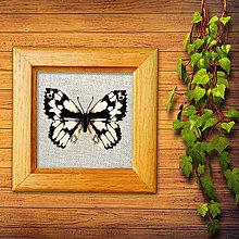 Obrázky - Vyšívané motýle (okáň timotejkový) - 10505228_