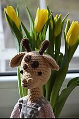 Hračky - Háčkovaná žirafka - 10515516_