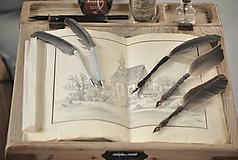 Papiernictvo - Kaligrafické brko na písanie atramentom (OLD ROSE) - 10519330_