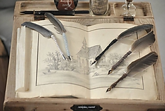 Kaligrafické brko na písanie atramentom