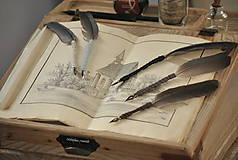 Papiernictvo - Kaligrafické brko na písanie atramentom (OLD ROSE) - 10519331_