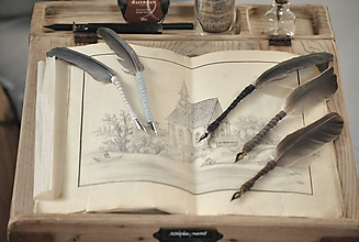 Papiernictvo - Kaligrafické brko na písanie atramentom - 10519330_