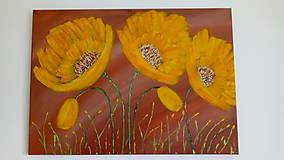 Obrazy - Kvety abstrakt - 10521441_