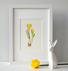 Kresby - Krokus - žltý - 10524216_