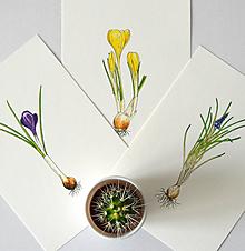 Kresby - Sada kvetiniek - 3 kusy - 10524287_