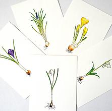 Kresby - Sada kvetiniek - 5 kusů - 10524297_