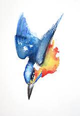 Obrazy - Rybárik alcedo maľba akvarel - 10528717_