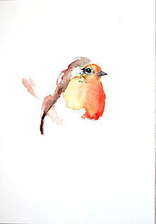 Obrazy - Pinka fringilla maľba akvarel - 10528708_