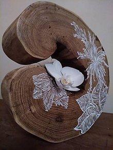 Dekorácie - white flover on wood - 10531351_