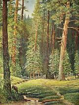 Obrazy - Hlboko v lese. - 10532814_