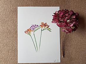 Kresby - Kresba: Kvietky Frézie - 10534054_