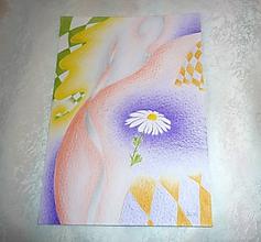 """Obrazy - kresba - """"Margaréta"""" - 10538929_"""