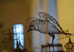 Fotografie - Leť vtáčik, leť - 10544407_