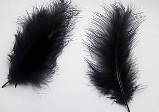 Suroviny - Pštrosie perie -20ks v balení - 10552944_