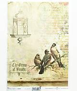 Papier - Ryžový papier na decoupage -A4-R705- vtáčiky, nostalgia - 10557637_