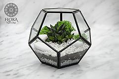 Nádoby - Vitrážové rastlinné terárium so sukulentom - 10558250_