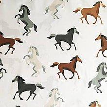 Textil - koníky; 100 % bavlna, šírka 160 cm, cena za 0,5 m - 10562080_