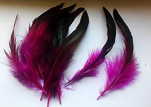 Suroviny - Kohútie perie - 20ks v balení - 10562185_