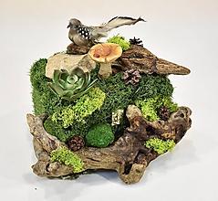 Krabičky - Šperkovnica-Krajinka : Poklady lesnej víly - 10562801_