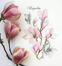 Obrazy - Obraz Magnólia II, akvarel + ceruzka, tlač A4 - 10563542_