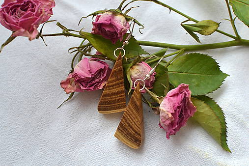 Náušnice - Agátové trojuholníčky