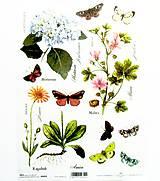 Papier - Ryžový papier na decoupage -A4-R403- motýľ, hortenzia - 10573358_