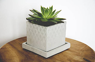 Nádoby - Betónový kvetináč Cube s podtáckou - 10572075_