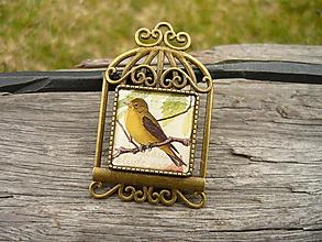 Odznaky/Brošne - Kovová brošňa Bird - 10580504_