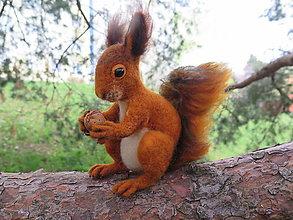 Dekorácie - Veverička - 10585010_