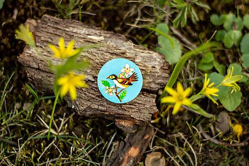 Ručně malovaná brož s ptáčkem v tyrkysové
