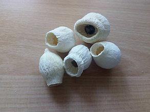 Suroviny - Bellgum biely 25 g - 10591615_
