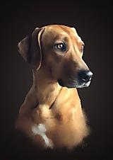 Grafika - Portréty na prianie - psíky - 10590326_