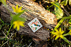 Odznaky/Brošne - Ručně malovaná brož s ptáčkem - mini - 10598441_