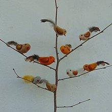 Dekorácie - ..plstený vtáčik... - 10595843_