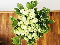 Kytice pre nevestu - gratulačná alebo svadobná kytica zo živých ruží - 10600556_