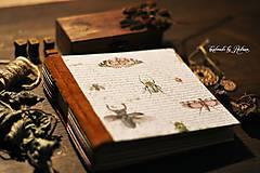 Papiernictvo - Hmyzí fotolabum - 10603938_
