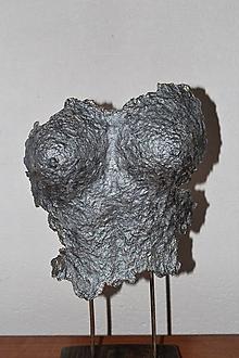 Socha - Torzo - plastika II - 10605917_