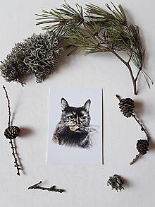 Papiernictvo - Pohľadnica: Mačka - 10605471_