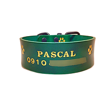 Pre zvieratká - Zelený obojok so zlatými labkami menom a t.číslom - 10607268_