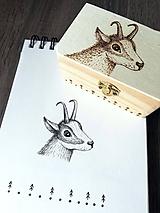 Krabičky - Box z prírodného dreva - Kamzík - 10608475_