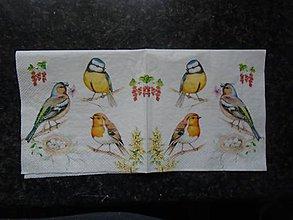 Papier - vtáčiky1 - 10612315_