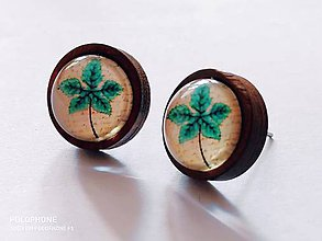 Náušnice - Náušnice NATUR v drevenej puzetke - 10614364_