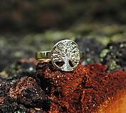 Prstene - Strom života - 10616581_