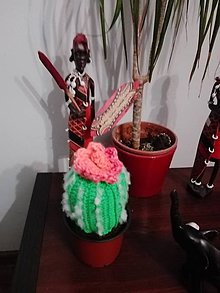 Iné doplnky - Mammillaria cactus - 10628379_