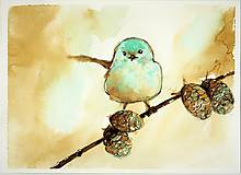 Obrazy - Amongst pine cones - 10625908_