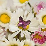 Detské doplnky - Detské / dievčenské strieborné náušnice motýliky Swarovski