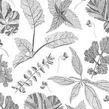 Úžitkový textil - Závesy z ľahšej bavlny - 1 pár  (Listy) - 10633446_
