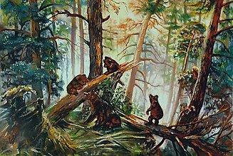 Obrazy - Ráno v lese - 10634918_