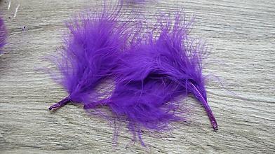 Suroviny - Morčacie pierka fialové, 24 ks - 10636798_